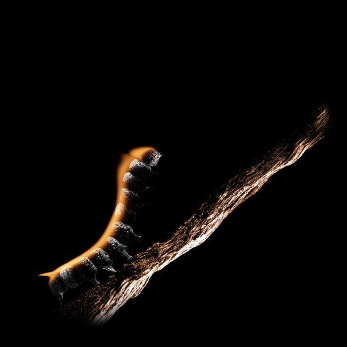 matchstick_art_20.jpg