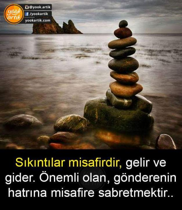FB_IMG_1491427880473.jpg