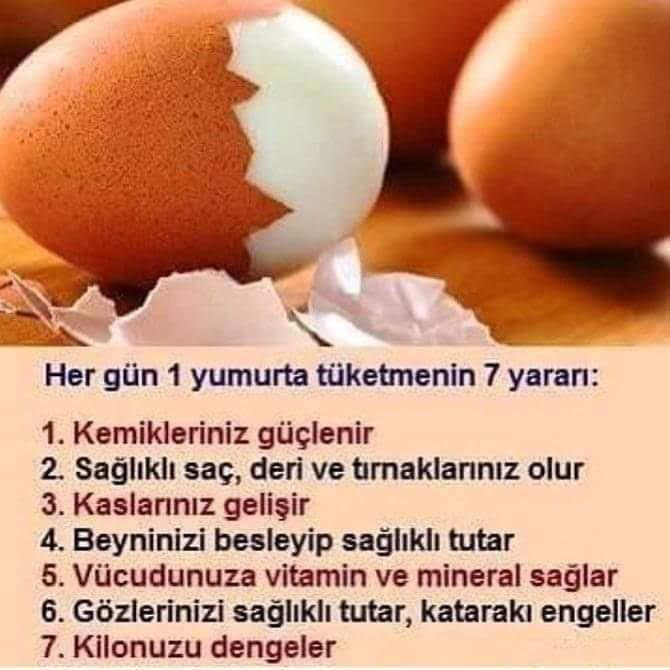 facebook_1584513870269.jpg