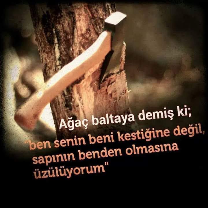 facebook_1585992269672.jpg